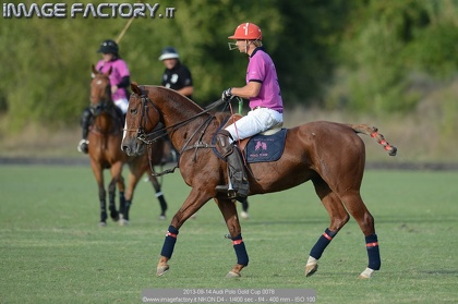 2013-09-14 Audi Polo Gold Cup 0078