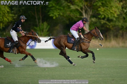 2013-09-14 Audi Polo Gold Cup 0123
