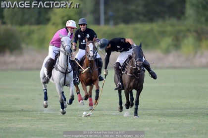 2013-09-14 Audi Polo Gold Cup 0177