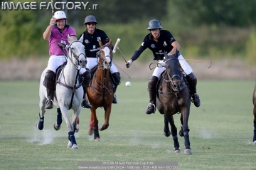 2013-09-14 Audi Polo Gold Cup