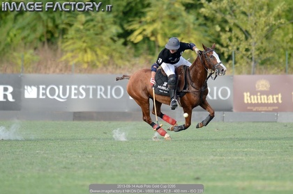2013-09-14 Audi Polo Gold Cup 0285