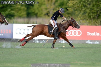 2013-09-14 Audi Polo Gold Cup 0300