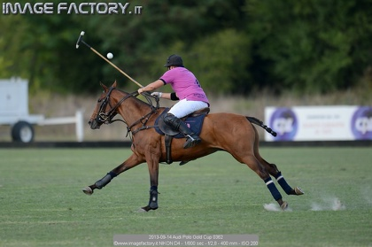 2013-09-14 Audi Polo Gold Cup 0362