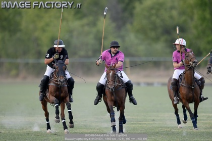 2013-09-14 Audi Polo Gold Cup 0649