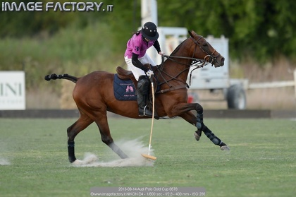 2013-09-14 Audi Polo Gold Cup 0678