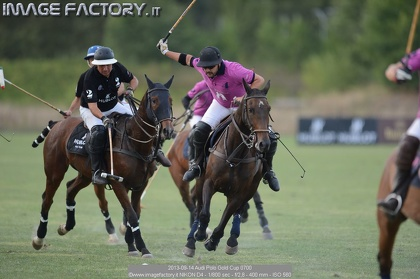 2013-09-14 Audi Polo Gold Cup 0700