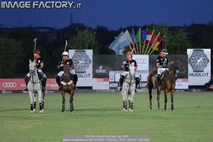 2013-09-14 Audi Polo Gold Cup 1285