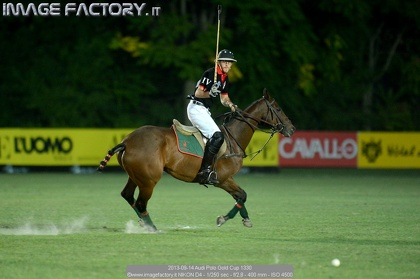2013-09-14 Audi Polo Gold Cup 1330