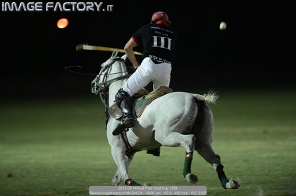 2013-09-14 Audi Polo Gold Cup 1394