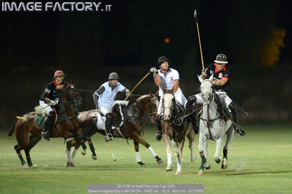 2013-09-14 Audi Polo Gold Cup 1425