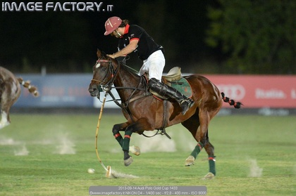 2013-09-14 Audi Polo Gold Cup 1433