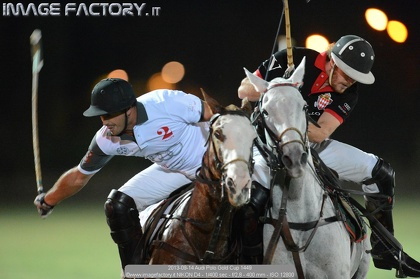 2013-09-14 Audi Polo Gold Cup 1449